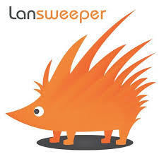 Программное обеспечение   Lansweeper Standard - annual license